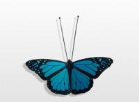 Decoratieobject RVS - art.nr. 192992 vlinder