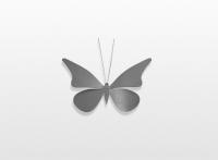 Decoratieobject RVS - art.nr. 896987 vlinder