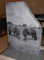 Lasergravure - art.nr. 5565 Paarden formaat 65cm x 45cm